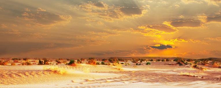 visual_desert_03_w765